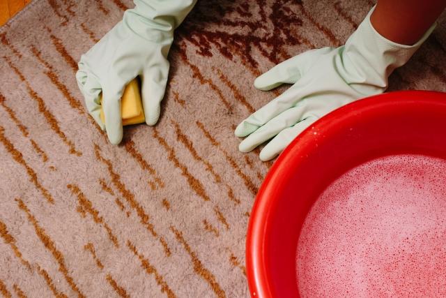 ゴム手袋でカーペット掃除
