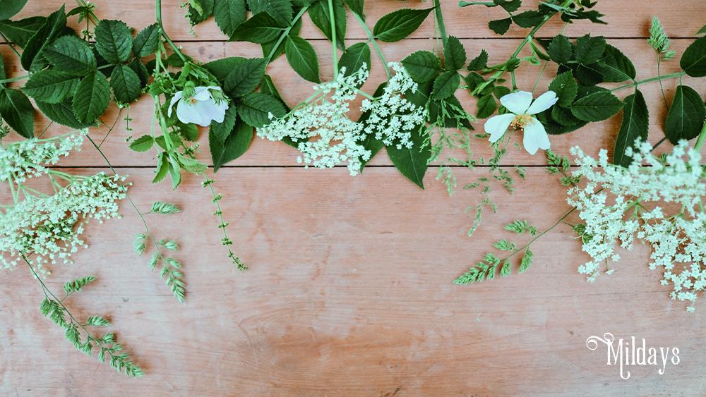 花のサブスクの上手な選び方!コスパや価格帯や花の鮮度、配達周期など